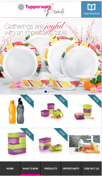 Tupperware mobile app designed by Construct Digital.png