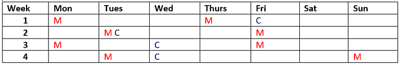 Pencilled Schedule.png