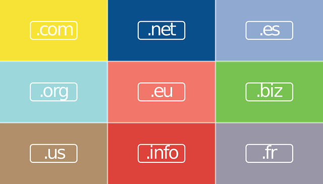choosing a domain and hosting provider.png